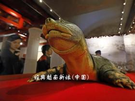 河内还剑湖供奉越南「护国神鳖」象征越南独立精神